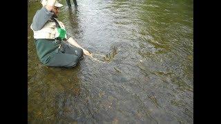 Fishing the Garbaage Bag X Caddis with Jim Misiura