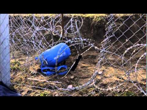 Europe migrant crisis: Razor wire fence failing in Hungary
