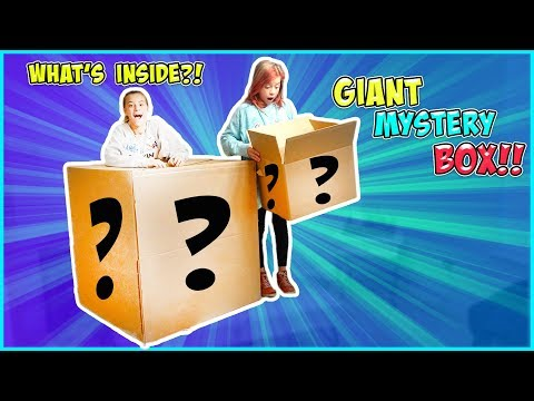 BIGGEST MYSTERY BOX EVER!! (NOT FROM EBAY)
