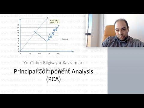 Principal Component Analysis (Temel Bileşenler Analizi, PCA)