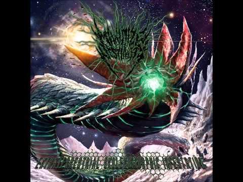 Maximize Bestiality - Intraocular Parasitic Entity 2014
