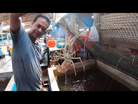 Hidden Seafood Restaurant In Tanjong Pinang