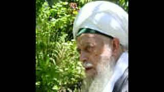 Sura Ya-Sin (Shaykh Muhammad Nazim)
