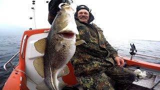 Рыбалка в Германии 37 Морская рыбалка  Ловля апрельской селёдки и трески под Килем Laboe(Рыбалка в Германии 37 Морская рыбалка Ловля апрельской селёдки и трески под Килем (Laboe), 2016-04-06T12:11:14.000Z)