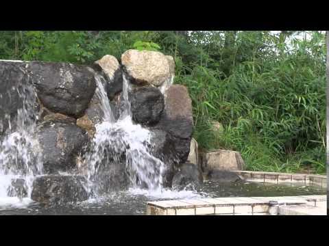 WATERFALL ,  Sunheon Bay  ,  REED FIELD ,  KOREA