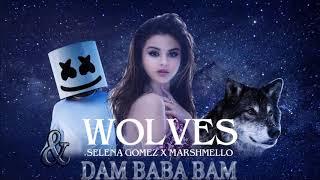 Selena Gomez, Marshmello - Wolves & dam baba bam remix mashup