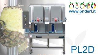 PL2D - Pineapples peeler and corer
