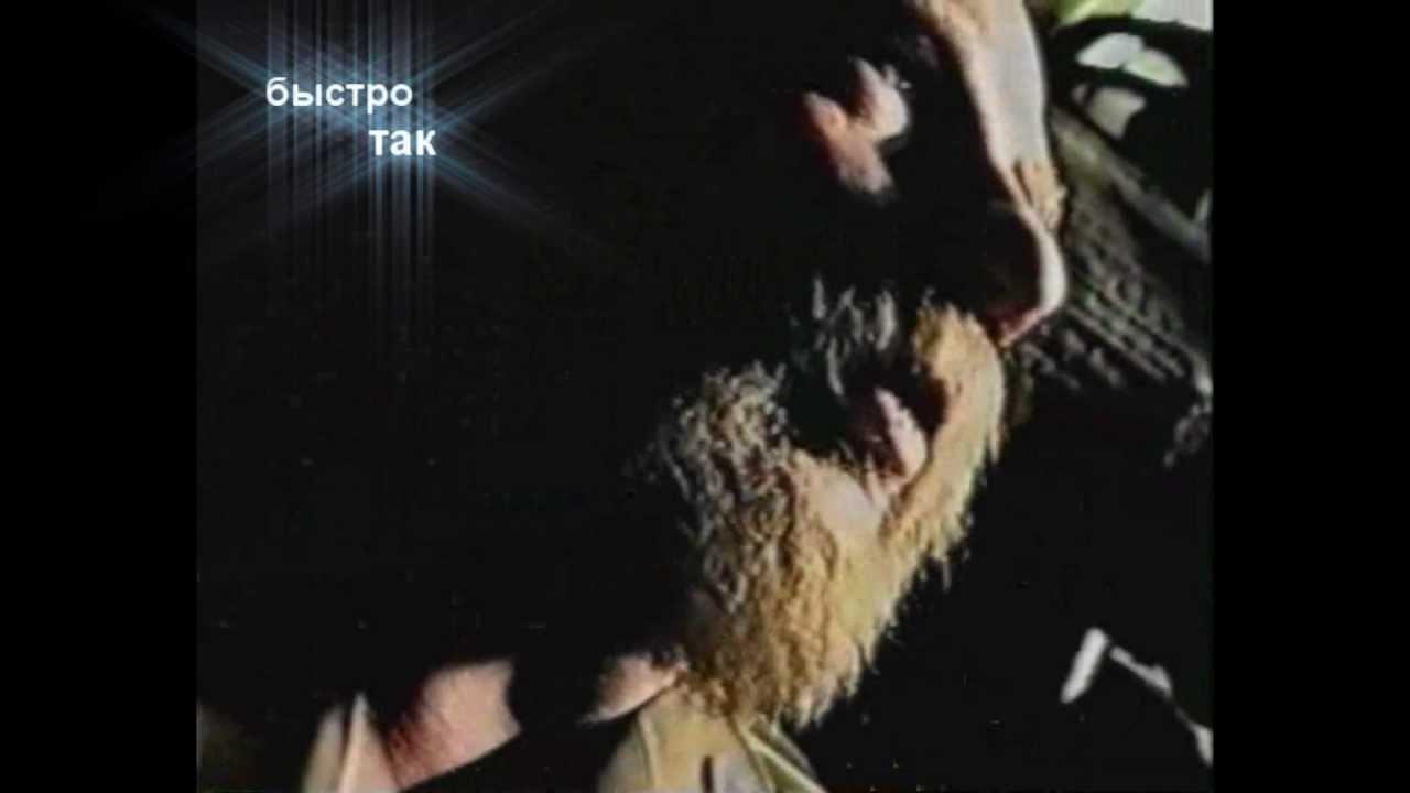 Зеленый Слоник - Лирика