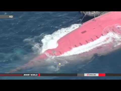 Chinese arrested for ship collision off Tokyo