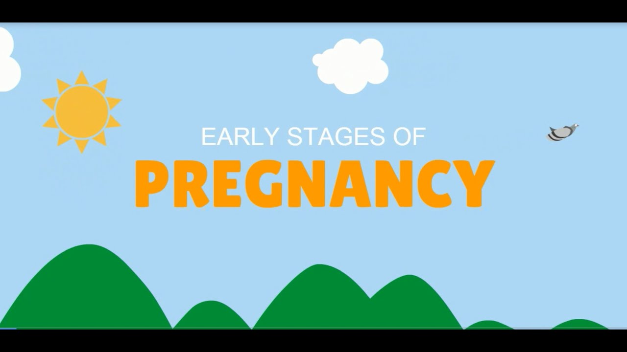 Early Stages of Pregnancy - YouTube