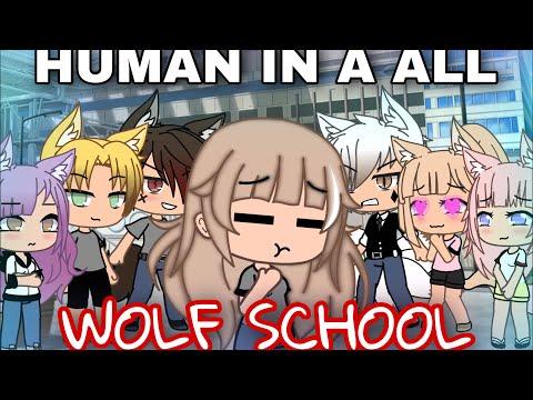 HUMAN IN AN ALL WOLF SCHOOL   Gacha Mini Movie  / GLMM