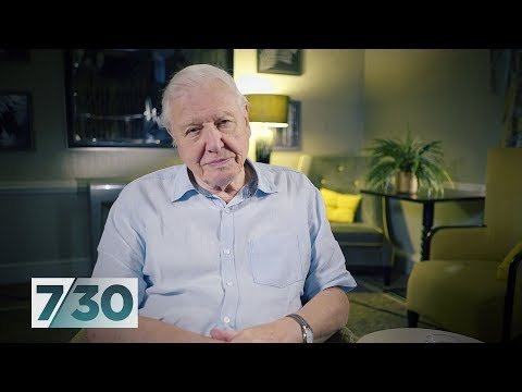 Sir David Attenborough Urges Australian Leaders To Act On Climate Change | 7:30
