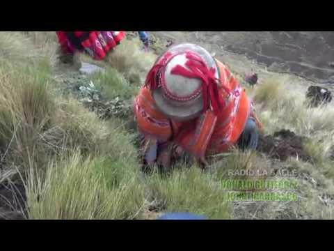 Queuña Raymi 2016 - Quechua - ECOAN -  Comentario Radio la Salle De Urubamba - Cusco Peru