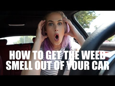HOW TO GET THE WEED SMELL OUT OF YOUR CAR (LIFE HACK)