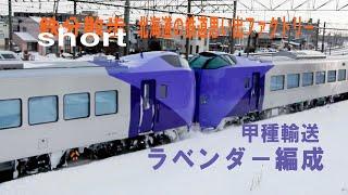 【鉄分散歩short】 ラベンダ-編成(キハ261系5000番台)甲種輸送 2021年2月4日