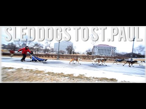 Sled Dogs to Saint Paul