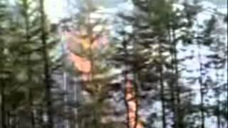 Фильм Пожары и их последствия