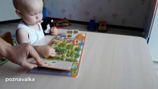Книга для детей. Обзор книги.
