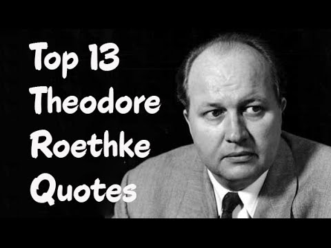 Top 13 Theodore Roethke Quotes (Author of The Collected Poems)