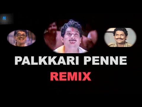 Palkkari Penne Remix | Jagathy Sreekumar | New Malayalam Song Remix | 2016