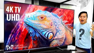 Is This New Best 4K QLED Android Smart TV From