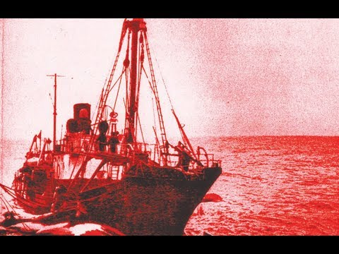 Soviet Whaling: A Study in Evil