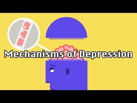 The Underlying Mechanisms of Depression