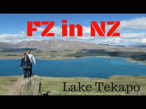 FriendZone in NZ - Nov 2-4, 2017