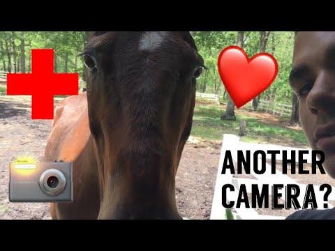 I SAVED AN ANIMALS LIFE..ANOTHER CAMERA?!?!