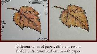 Different Types Of Paper Different Results PART 3 Autumn