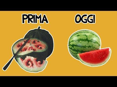 8 Frutti Prima Che li Addomesticassimo