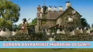 Qurban bayraminiz mubarek.