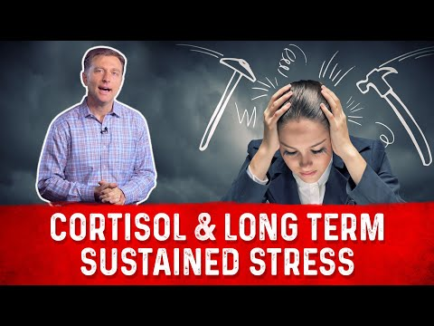Cortisol & Long Term Sustained Stress