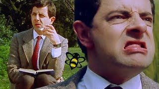 Bumble BEAN | Mr Bean Full Episodes | Mr Bean Official