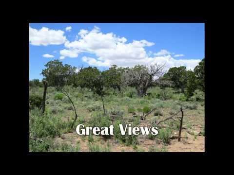 160 Acre Ponderosa Ranch, Fence Lake