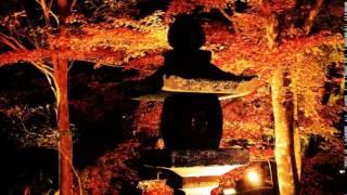 宝生寺の秋