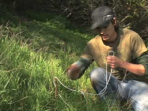 Basic Wilderness Survival Skills : Wilderness Survival: Making a Snare