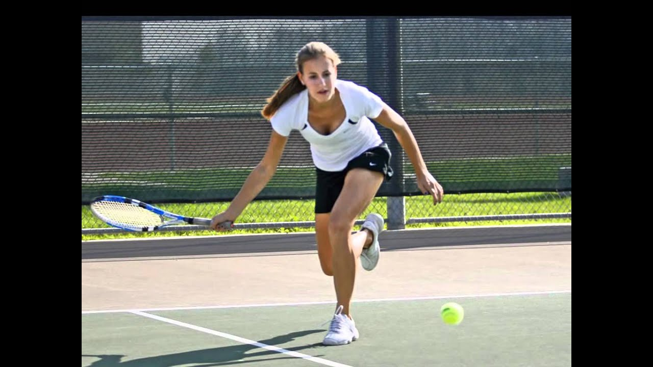 college and high school tennis Educational requirements vary by state and are sometimes determined by the local sports association although some states have no formal education requirements, other states require umpires, referees, and other sports officials to have a high school.