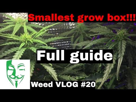 Micro grow THE SECRET Autoflower LED CFL GROW BOX (smallest growbox!!!!)