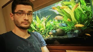 видео Легко ли ухаживать за аквариумом c живыми растениями
