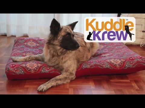 KuddleKrew® 毛得舒 可拆洗寵物床- 棉芯+醫療級 防水套 -  防蟎 抗敏 抗菌 阻燃