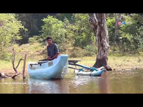 Kaiveli, Mullaitivu | Maruthamadu | Vanakkam Thainaadu Part 01 07-02-2018 | IBC Tamil TV