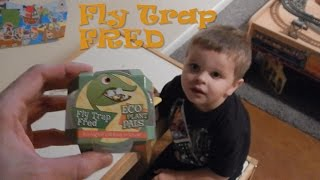Eco Plant Pals: Fly Trap Fred
