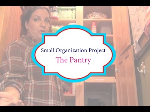 Small Organization Project: The Pantry