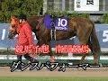 <競馬予想>ベガ賞競走B3二選抜特別 ダンスパフォーマー 大井競馬7R2014.07.6