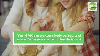 GMOs Safe for My Family?