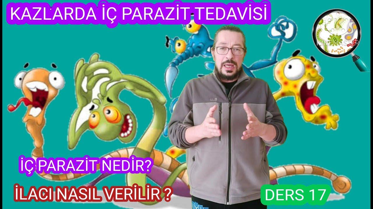 parazitáktól Törökországban