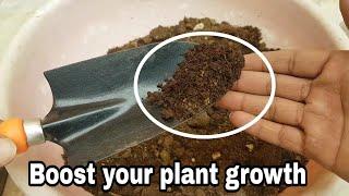 Use this and Boost your plant growth : best fertilizer for plants : mogra plant fertilizer