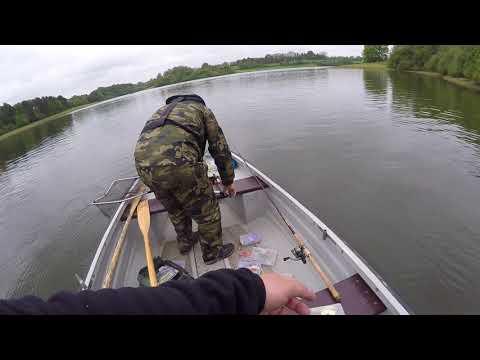 Zafishowany #10: 2017 Bewl Water -  GP PAA. Trout And Perch