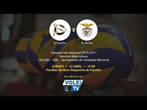 Jogo porto sporting directo online dating